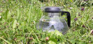 Živá voda aneb programování a přírodní filtrace vody