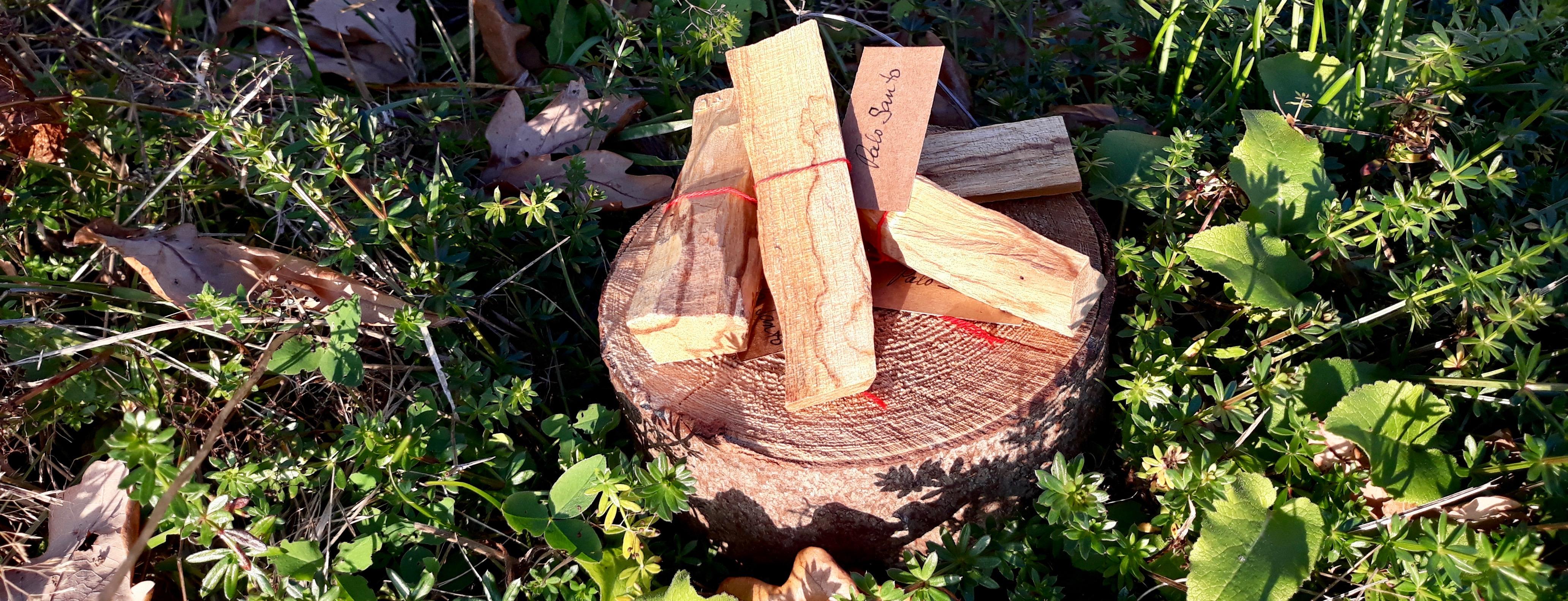 Palo Santo – posvátné dřevo