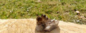 Čištění a nabíjení kamenů – část 22. – Záhněda